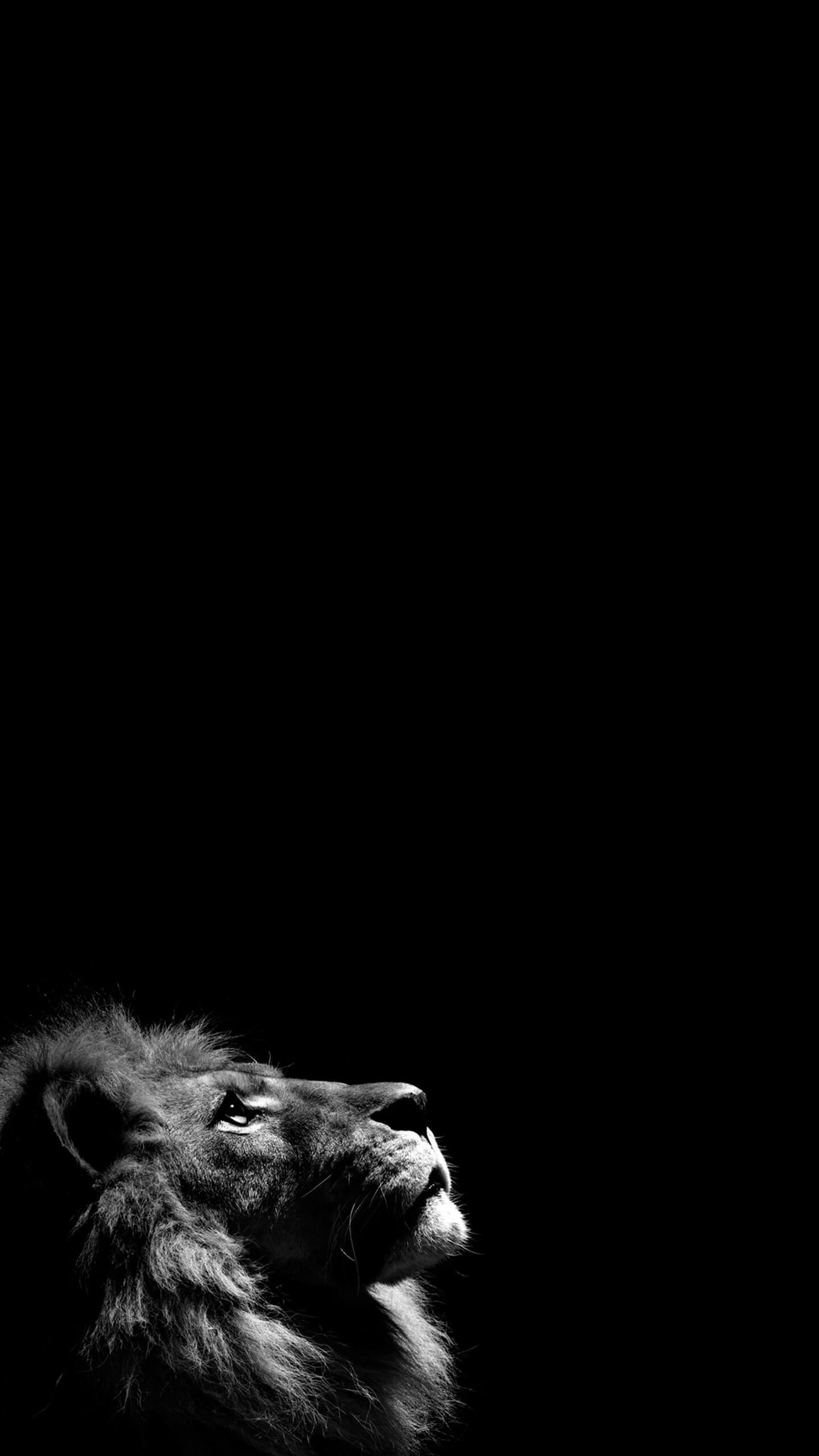 S lection de 20 fonds noirs pour iphone x et son cran oled for Fond ecran sombre