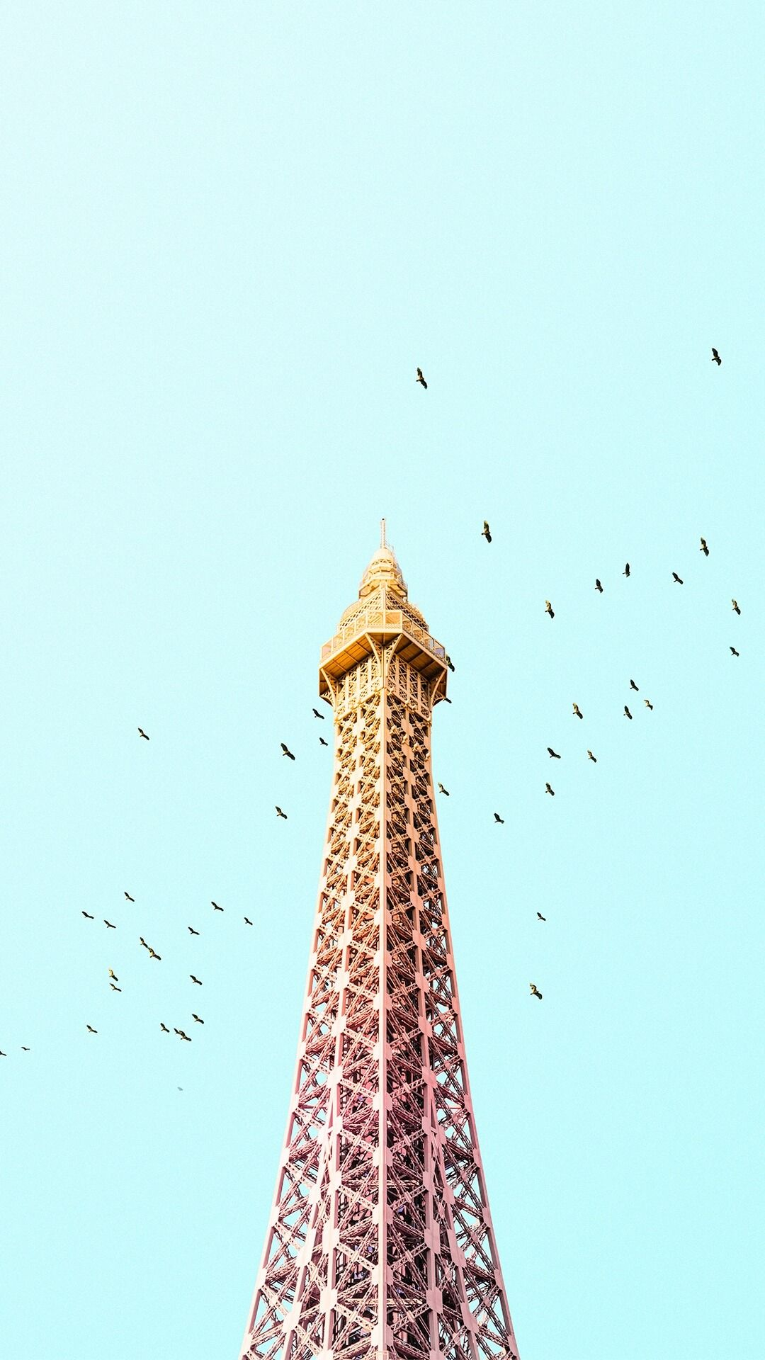 paris eiffel tower birds colorful iphone 7 plus hd wallpaper